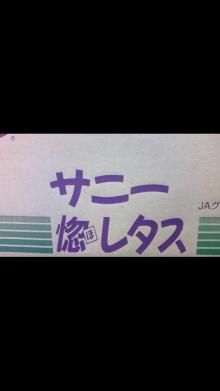 東岡崎 豚もつ鍋屋の社長ブログ-111210_1059~010001.jpg