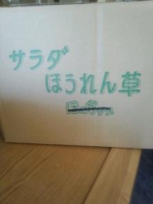 東岡崎 豚もつ鍋屋の社長ブログ-1329798923173.jpg